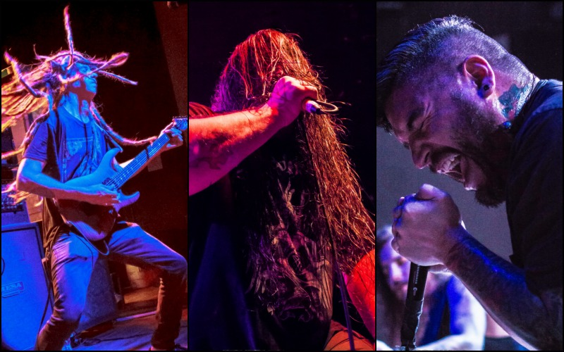 Cannibal Corpse Gallery